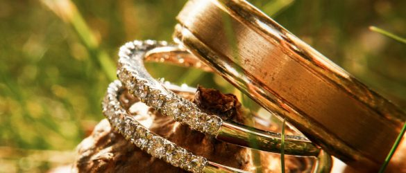 Gorgeous wedding rings sparklie on acorn